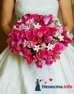 Фото 111953 в коллекции мои фотографии - Свадебный распорядитель Ольга Фокс