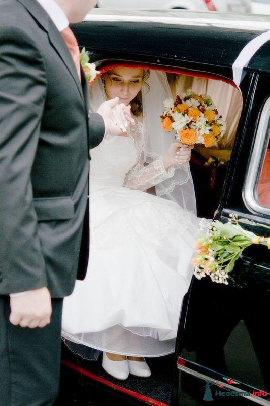 Фото 143323 в коллекции Свадебные - Петрова Виления, свадебный фотограф
