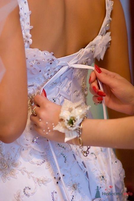 Фото 51802 в коллекции Свадьба Эльдара и Анны - Sunny-Angel