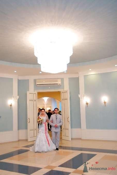 Фото 51818 в коллекции Свадьба Эльдара и Анны - Sunny-Angel