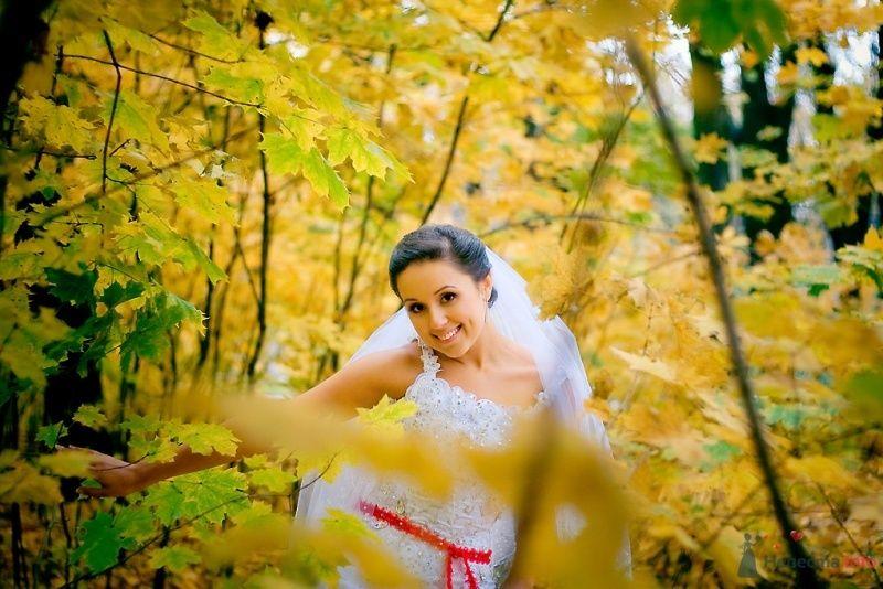 Невеста в белом платье стоит в осеннем лесу - фото 51850 Sunny-Angel