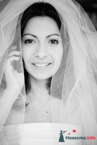 Фото 63897 в коллекции Свадьба - FALLINLOVE