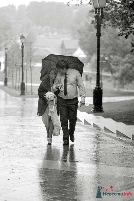 Свадебная прогулка в дождь в Царицыно, двое влюбленных под зонтом - фото 44161 Фотограф Владимир Будков