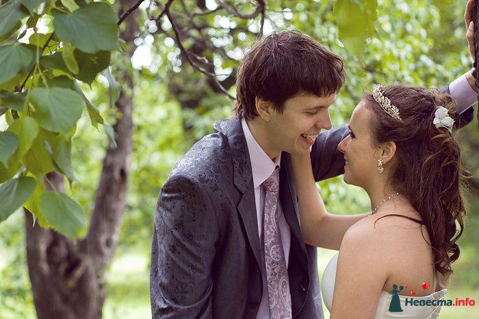 Прогулка невесты и жениха в яблоневом саду в коломенском. - фото 111340 Фотограф Владимир Будков