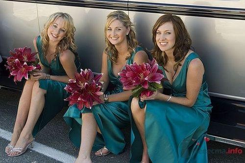 Очаровательные подружки - фото 4893 Свадебный распорядитель - Бедрикова Оксана