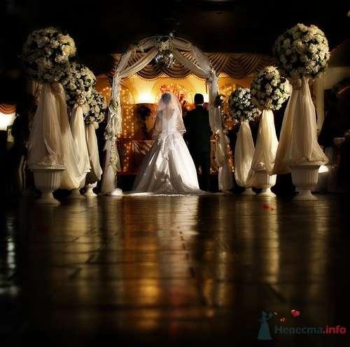 Фото 7334 в коллекции Разное (не мои работы) - Свадебный распорядитель - Бедрикова Оксана