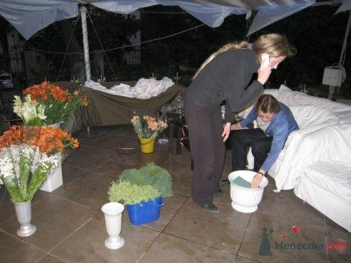 Фото 23133 в коллекции Разное (не мои работы) - Свадебный распорядитель - Бедрикова Оксана