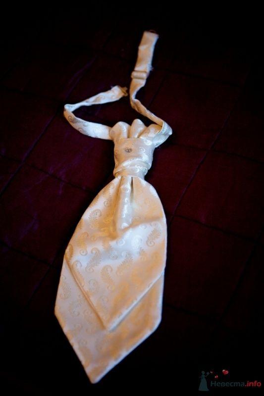Фото 52544 в коллекции Разное (не мои работы) - Свадебный распорядитель - Бедрикова Оксана