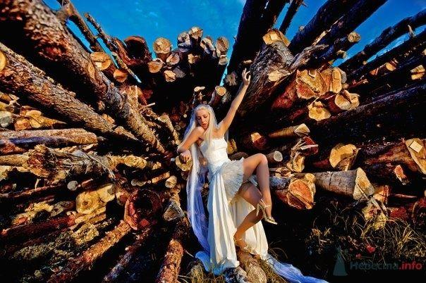 Фото 54819 в коллекции Разное (не мои работы) - Свадебный распорядитель - Бедрикова Оксана