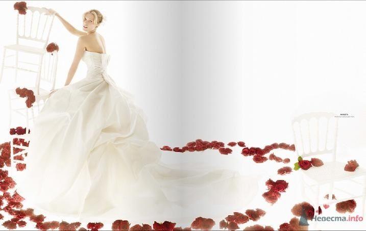 Фото 54841 в коллекции Разное (не мои работы) - Свадебный распорядитель - Бедрикова Оксана