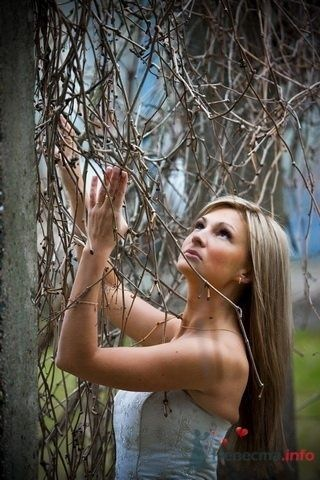 Фото 55031 в коллекции Разное (не мои работы) - Свадебный распорядитель - Бедрикова Оксана