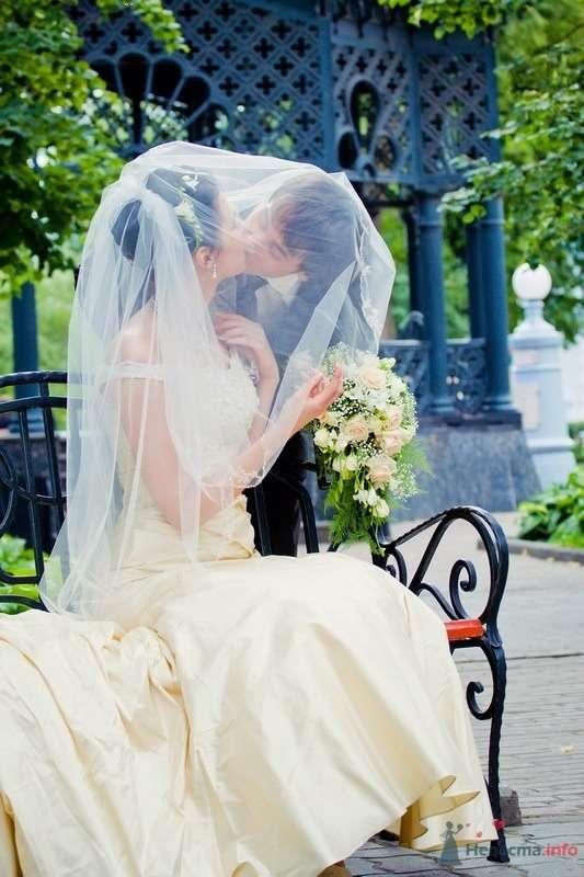 Фото 61677 в коллекции Моя свадьба!!! - Ксения007