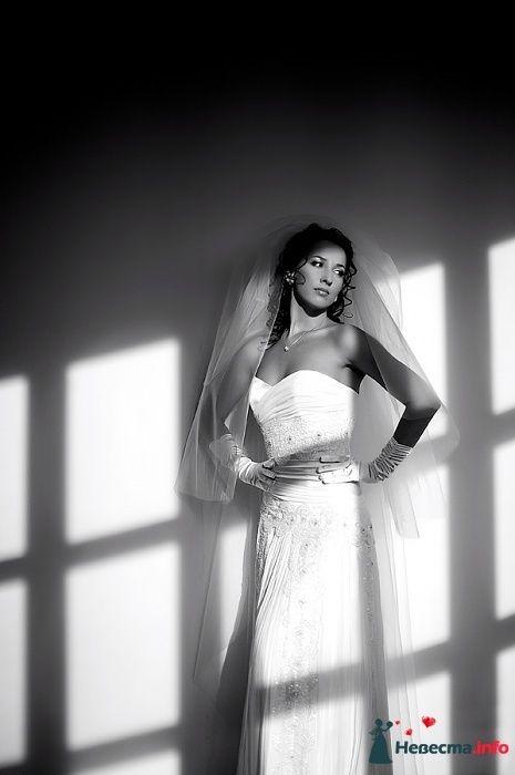 Фото 98524 в коллекции Мои фотографии - Chanel№5
