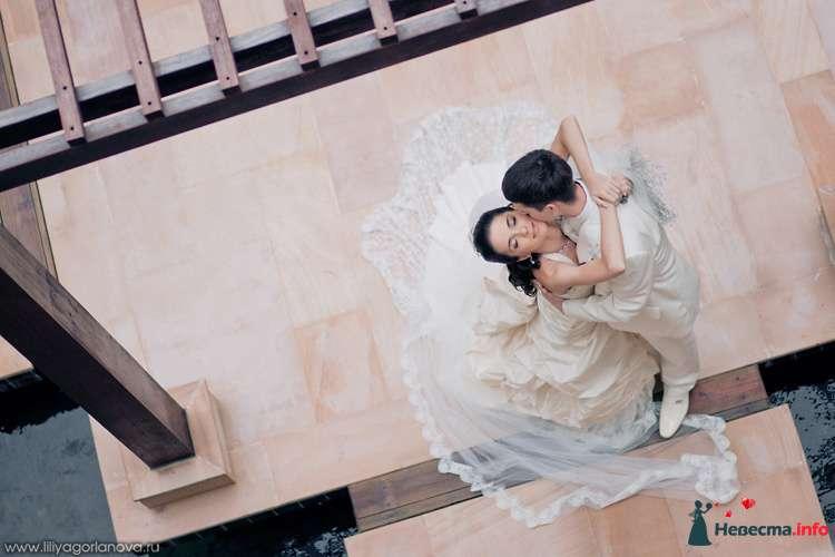 Жених и невеста сидят, прислонившись друг к другу, в парке - фото 98645 Chanel№5