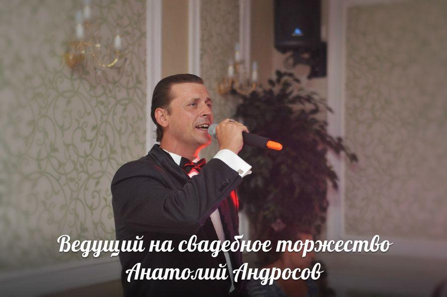 Одна из изюминок программ Анатолия  - их песенная составляющая! - фото 17253770 Ведущий торжеств Анатолий Андросов