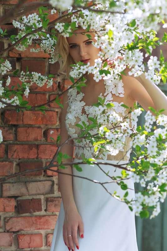 Фото 17430642 в коллекции wedding foto - Лищинский Виталий - фотограф