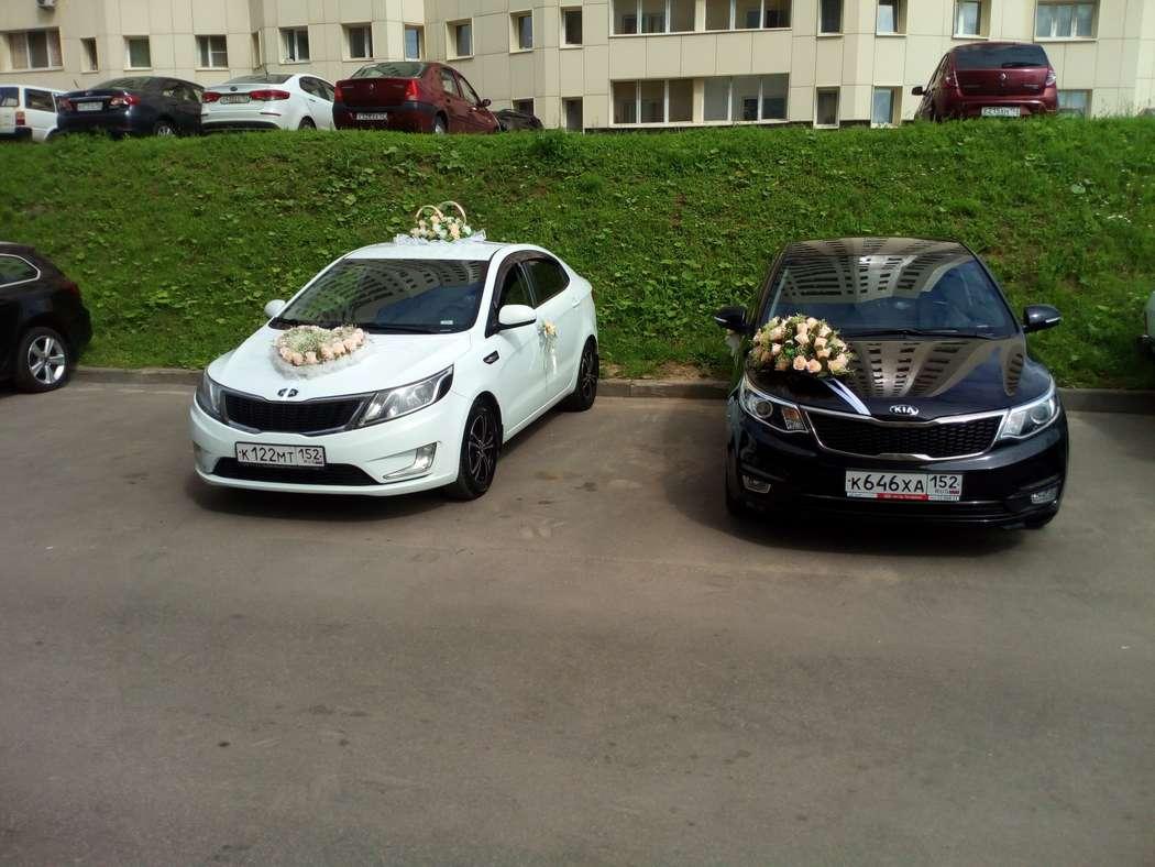Фото 17395522 в коллекции Свадьбы наших клиентов - Аренда авто Свадебный кортеж
