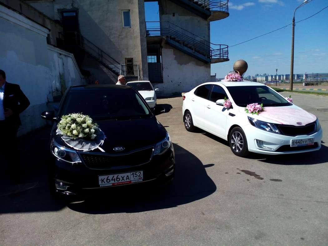 Фото 17395558 в коллекции Свадьбы наших клиентов - Аренда авто Свадебный кортеж