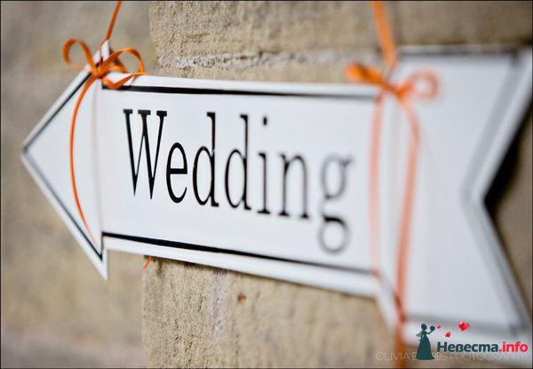 Фото 98877 в коллекции Для свадьбы