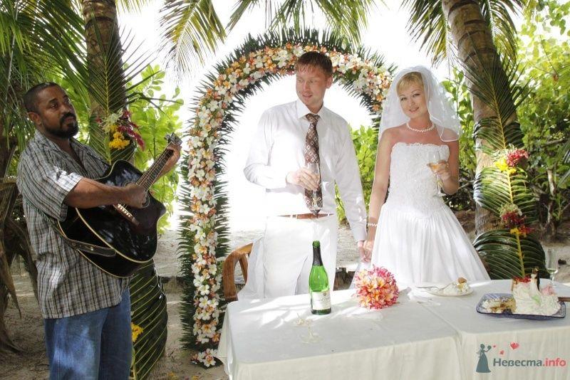 Фото 53138 в коллекции Свадьба!
