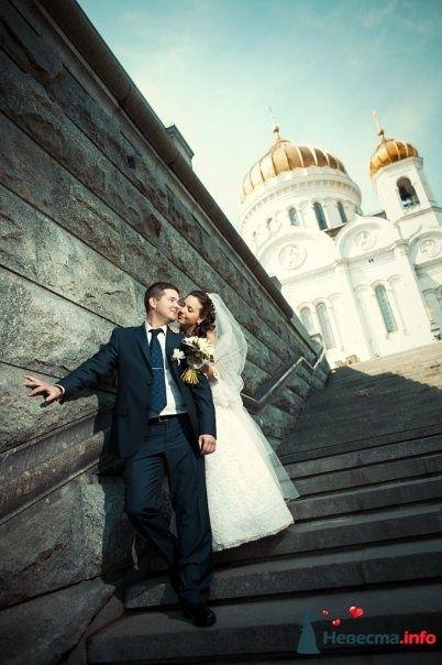 Фото 111412 в коллекции Мои фотографии - Glazyr'ka