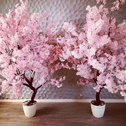 Дерево сакуры в аренду