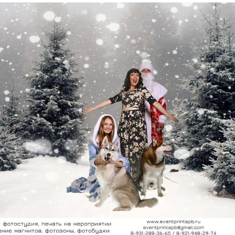 """Фото 17741388 в коллекции И хорошее настроение не покинет больше вас!))) - Студия праздников """"Fan-Tame"""""""