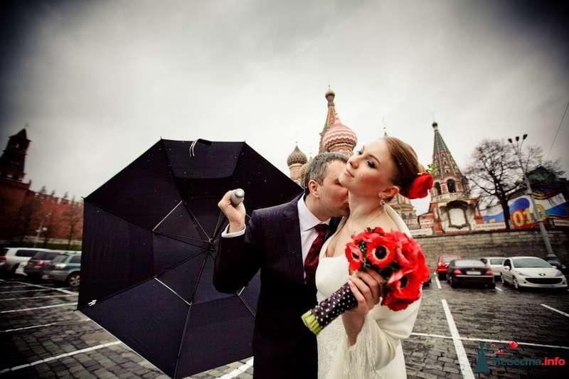 Фото 117640 в коллекции Мои фотографии - VOLKODAVVNV