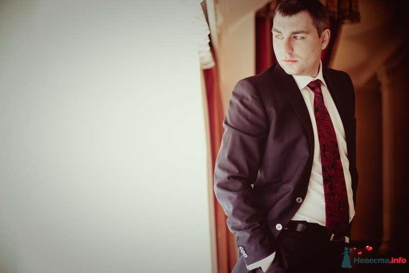 Классический серый костюм жениха с белой рубашкой, с черно-красным галстуком и черным ремнем для брюк - фото 123264 VOLKODAVVNV