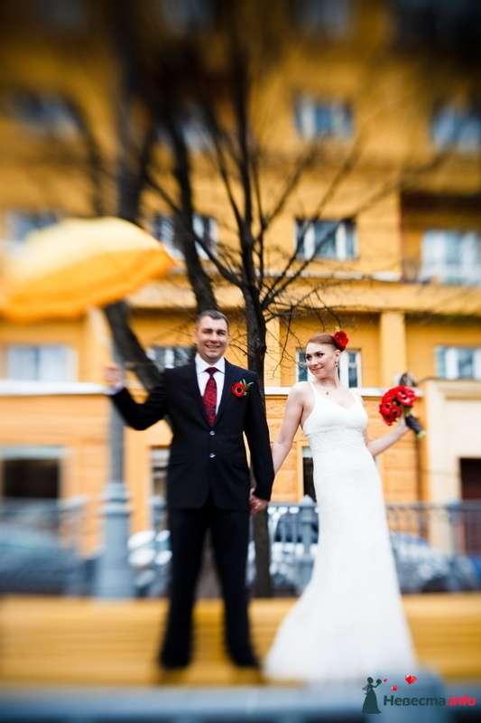 Фото 123277 в коллекции Мои фотографии - VOLKODAVVNV