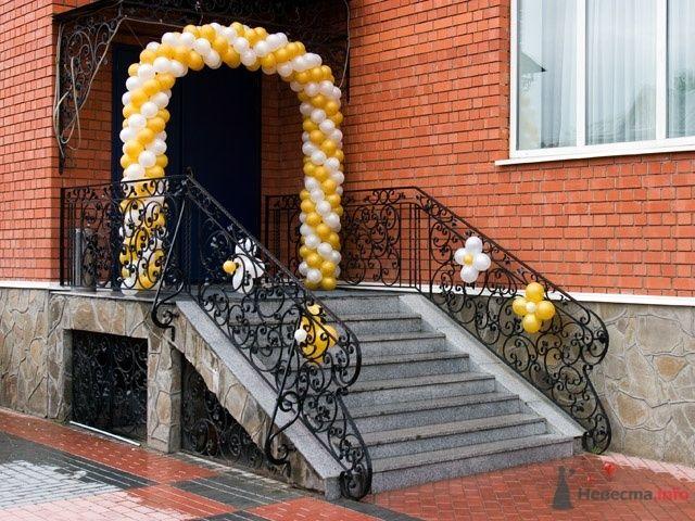 Фото 54299 в коллекции Оформление воздушными шарами - Невеста01