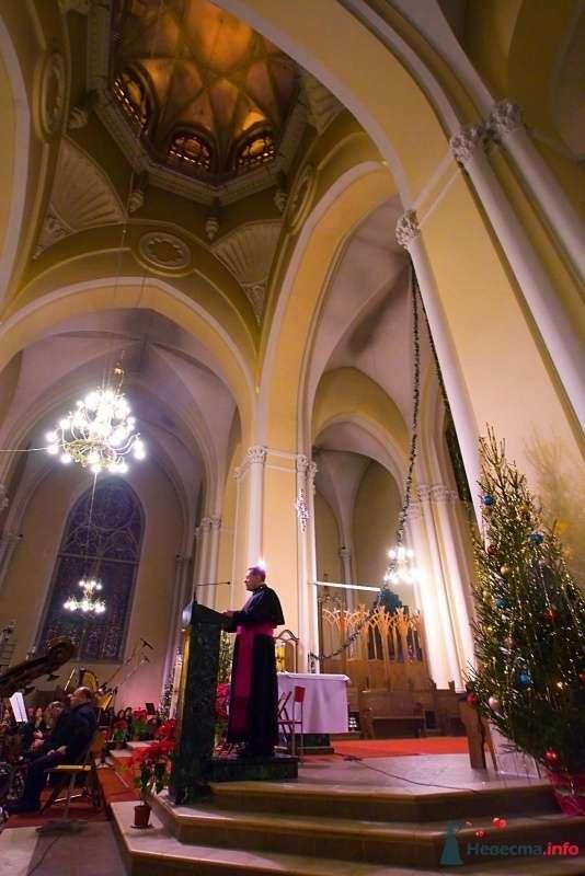 Фото 75649 в коллекции Кафедральный собор непорочного зачатия Пресвятой Девы Марии - Incognito