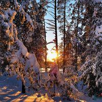Зима, январь_2