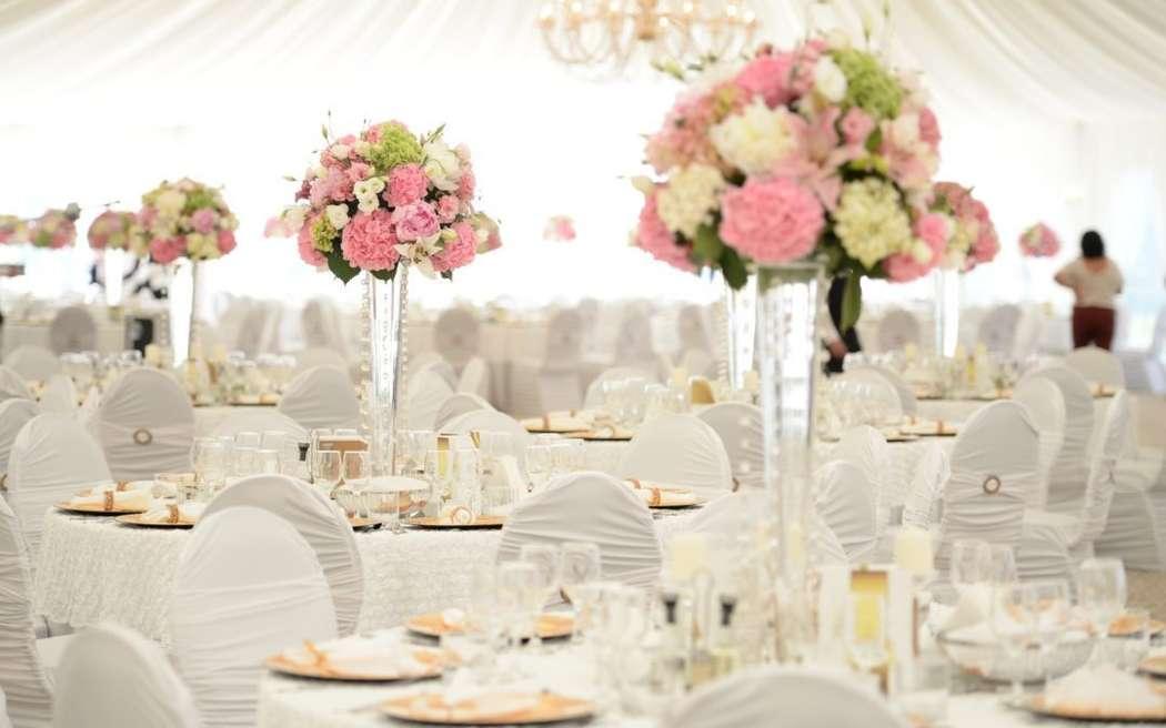 """Фото 18159910 в коллекции Wedding catering - """"Regatta Catering"""" - кейтеринг"""