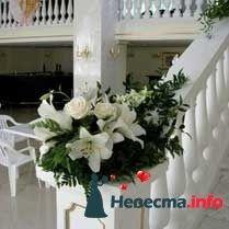 Фото 87417 в коллекции Мои фотографии - Подружка невесты - свадебный организатор и распорядитель