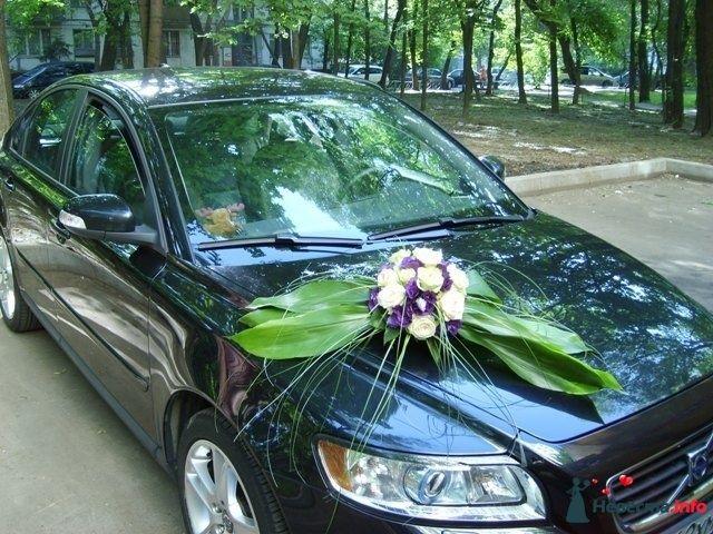 Украшение автомобиля - фото 107194 Подружка невесты - свадебный организатор и распорядитель