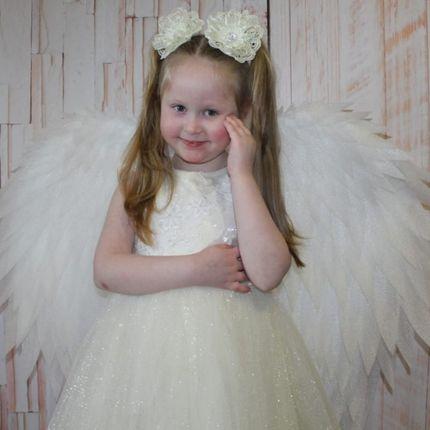 Крылья для маленькой принцессы