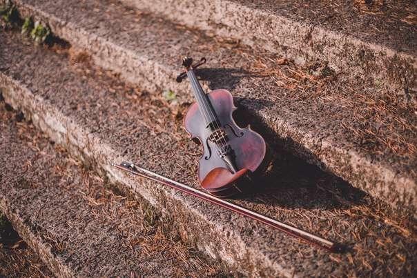 Фото 18571668 в коллекции Акустическая скрипка - Скрипачка KasandRA