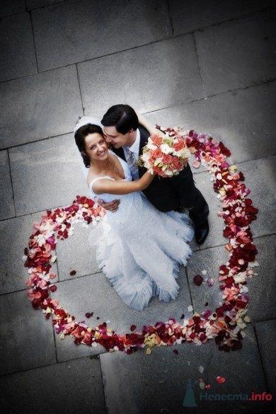 Свадьба - фото 62426 Pavlov