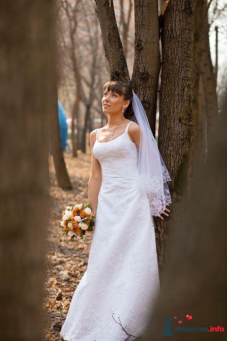 Фото 94083 в коллекции Свадьба 16.04.2010 - Дарьяночка