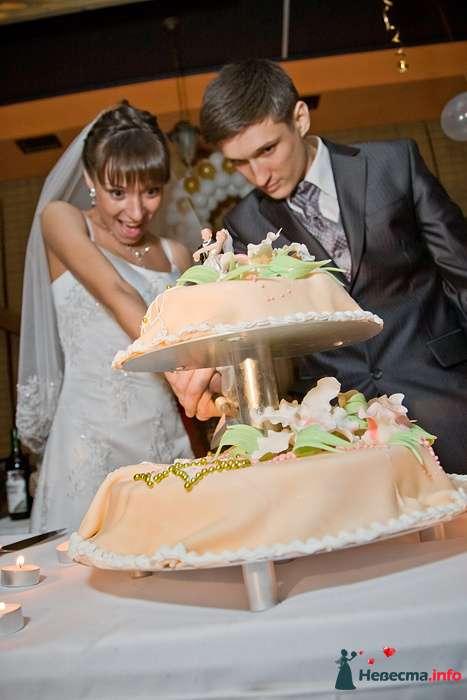 Фото 94135 в коллекции Свадьба 16.04.2010 - Дарьяночка