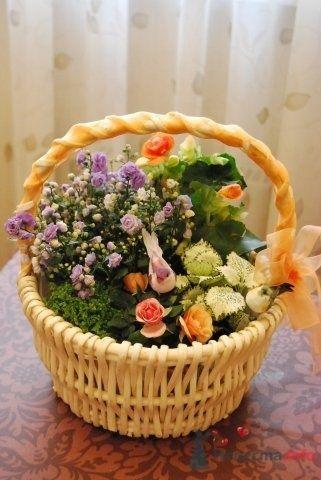 Фото 57333 в коллекции цветочные композиции - мояСовесть