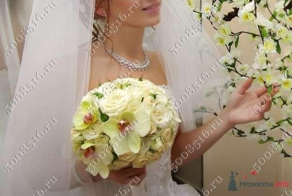 "Фото 78562 в коллекции Мои фотографии - Салон ""Svetlana Polushkina"" - свадебная флористика"