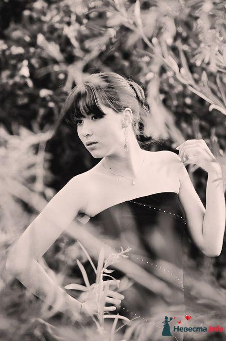 Фото 102593 - Невеста01