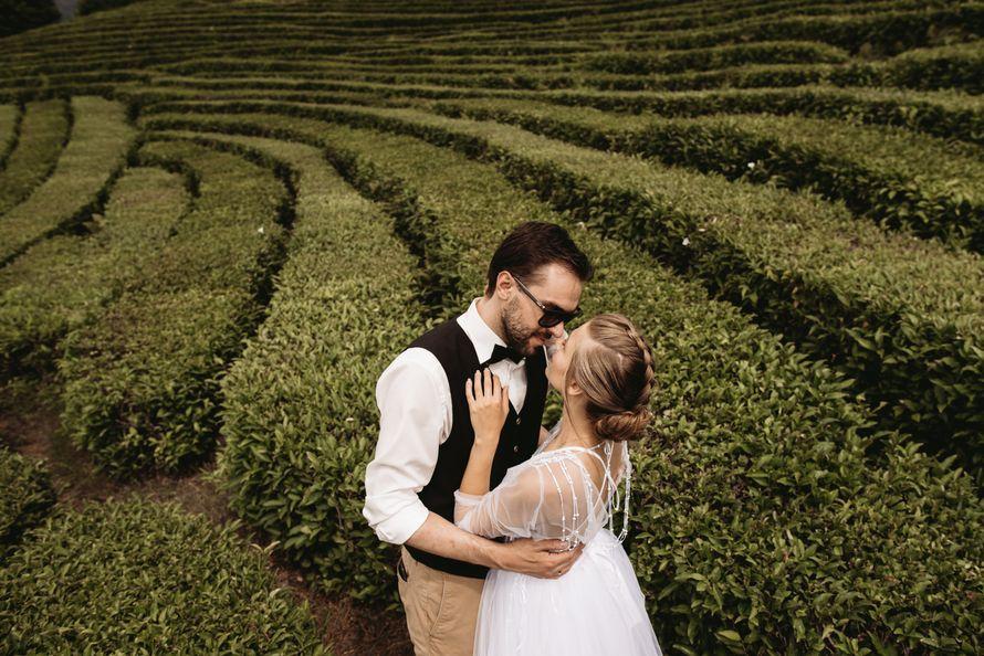 Фото 18909380 в коллекции Портфолио - Christin Wedding - свадебное агентство