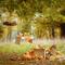 "Фотопроект ""Яркие Краски Осени"", декор Леонова Евгения, фотограф Светлана Бурман"