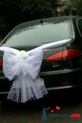 Фото 109794 в коллекции Подготовка к свадьбе - besol