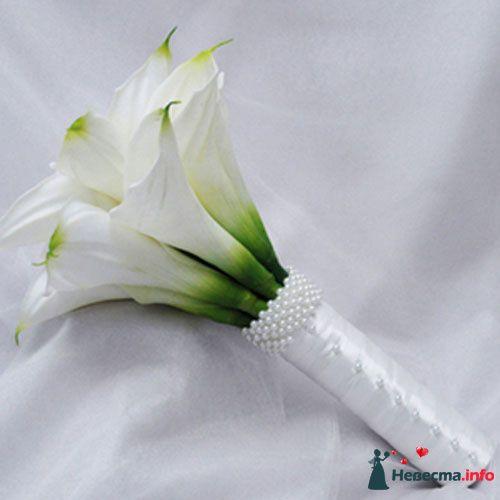 Фото 109826 в коллекции Подготовка к свадьбе - besol