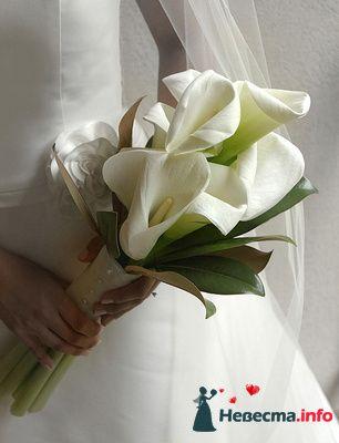 Фото 109828 в коллекции Подготовка к свадьбе - besol