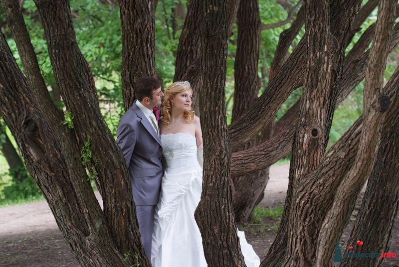 Фото 118996 в коллекции свадьба